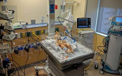 Simulation – Pharmacy students participate in NICU training for real life emergencies